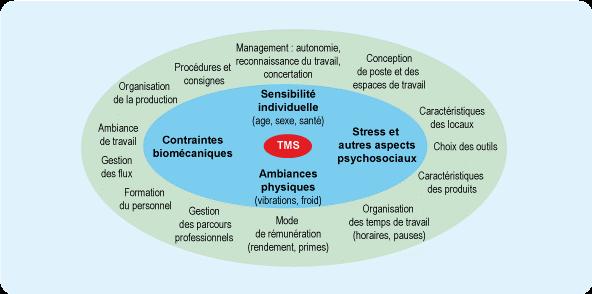 Facteurs Favorisants les TMS