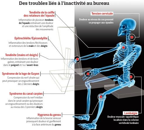 Troubles Musculo-Squelettiques les plus courants